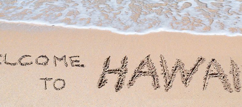 Auto Transport Options if You're Moving to Hawaii